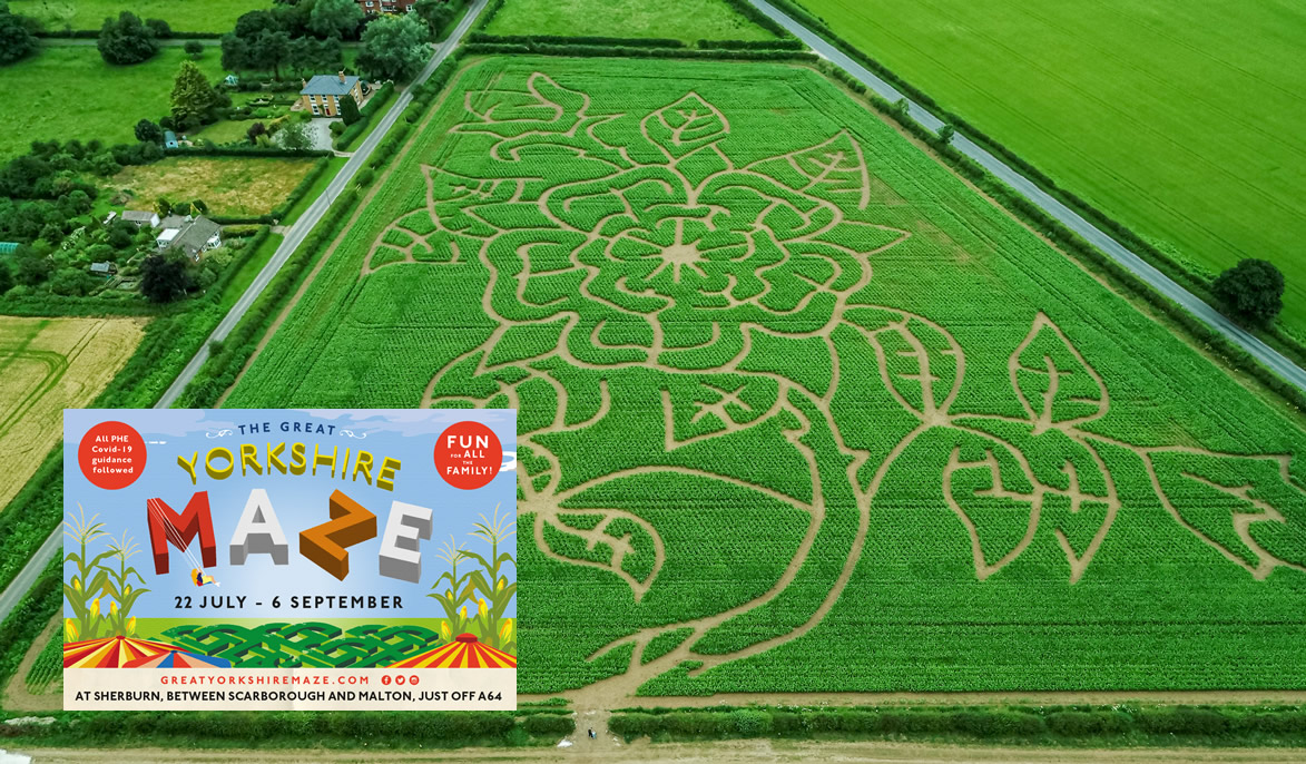 THE GREAT YORKSHIRE MAZE
